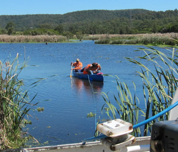 aquatic weed management